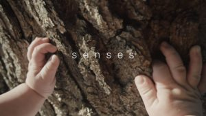 """Johnson and Johnson - """"Senses"""""""